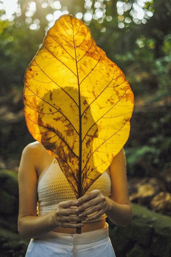 jak działa ego - kobieta schowana zajesiennym liściem